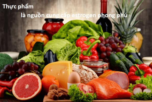 thuc-pham-la-nguon-cung-cap-estrogen-phong-phu